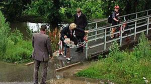 Potok Służewiecki: zamknięte kładki, zalane chodniki