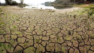 Koszmarna susza pustoszy Hiszpanię