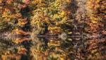 2015 10 26 Jezioro Szmaragdowe jesień 16.jpg