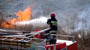 Spłonęło 6 hektarów nieużytków