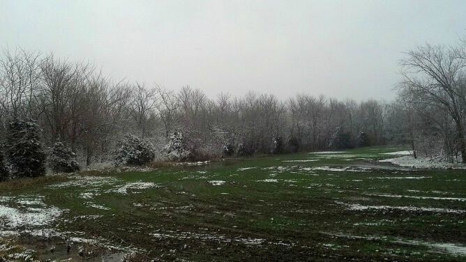Prognoza pogody na dziś: popada deszcz i deszcz ze śniegiem