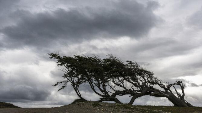 Pogoda na 5 dni: krótkotrwałe, ale silne opady i porywisty wiatr