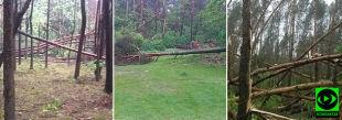 """""""Połamane drzewa, uszkodzone dachy"""". Relacje po załamaniu pogody"""